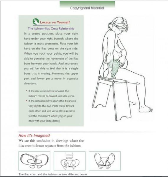 femme-enceinte-calais-germain- centre chaps paris